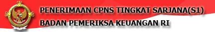 Penerimaan CPNS 2013